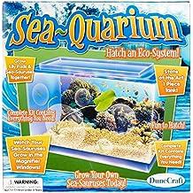DuneCraft SQ-0259 Sea-Quarium Science Kit
