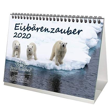 Eisbärenzauber - Calendario de mesa (formato DIN A5, incluye 1 ...