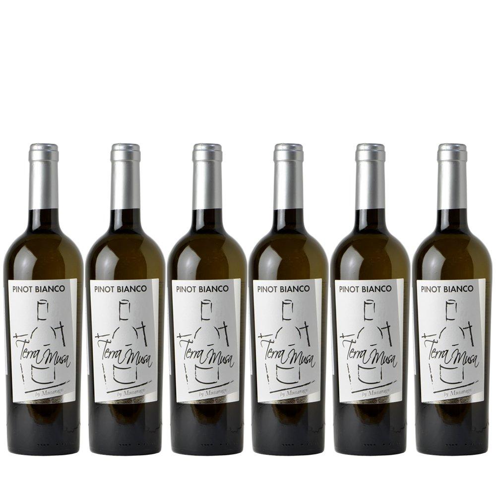 ピノビアンコ 白 白 6本セット【お買い得 ワイン】 B075F797CZ オーガニック ワイン B075F797CZ, ハチリュウマチ:87637cec --- yogabeach.store