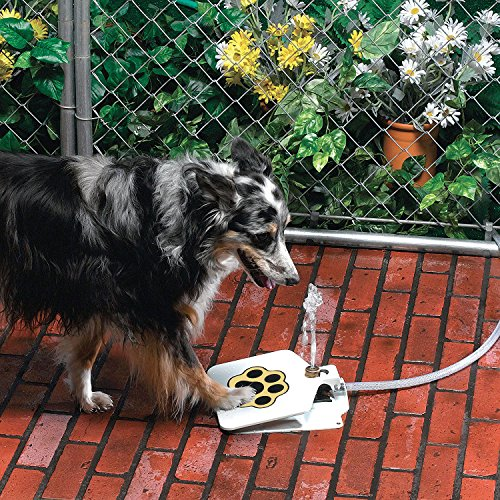 Dog Pet Water Fountain API Doggie Fountain ()