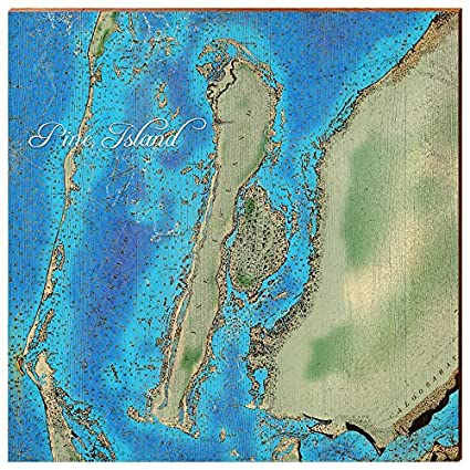 Amazon.com: MILL WOOD ART Pine Island, Florida Map Home ...