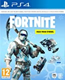 Fortnite : Pack froid éternel