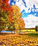 8x10 ft Fall Yellow Natural Scenic Photography Backdrops Autumn Backdrop Beautiful Lake Tree Leaves Trail Photo Studio Background