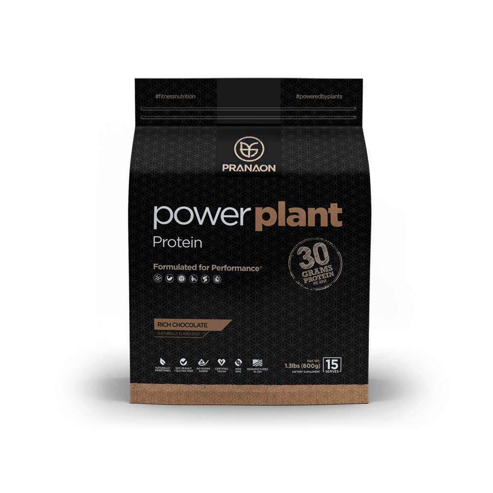 Power Plant Protein Powder by PranaOn – Great Tasting Vegan Plant Based Protein Supplement – Non Dairy, Gluten Free, Keto Friendly, Non GMO – Rich Chocolate, 15 Servings
