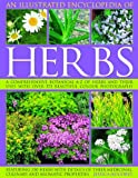 An Illustrated Encyclopedia of Herbs, Jessica Houdret, 1844765466