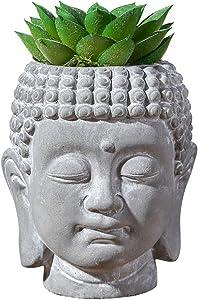 "Mini Artificial Plants Artificial Succulent Pots Buddha Head Include Plants 4.3 ""Home Office Bathroom Decoration"