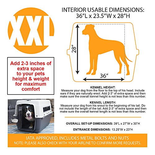 Xx Airline Approved Dog Kennel Lb Dog