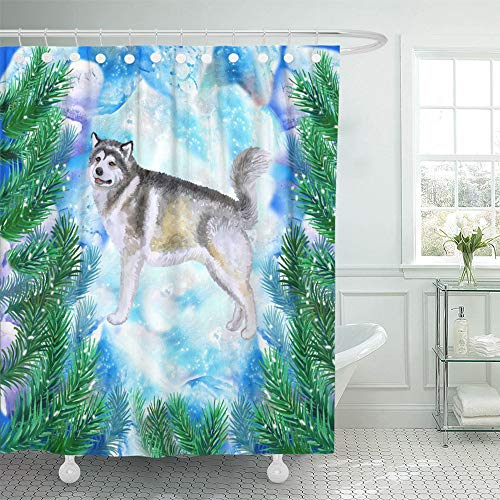 Emvency Shower Curtain Set Waterproof Adjustable Polyester Fabric Alaskan Malamute Symbol of New Year and Christmas with Fir Tree Branches Cute 66 x 72 Inches Set with Hooks for Bathroom Alaskan Fir Christmas Tree