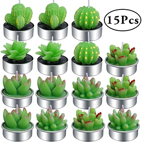 Amazon.com: Outee - 15 velas de té hechas a mano de cactus ...