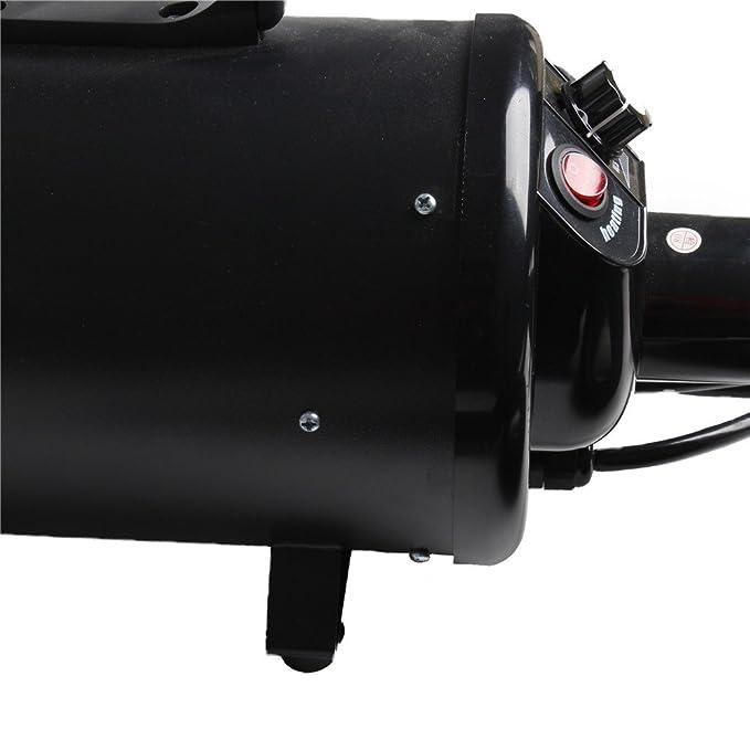 Display4top Pantalla Profesional 2800 W Low Noise Perros Cuidado secador Calor Ajustable y Velocidad (Negro): Amazon.es: Productos para mascotas