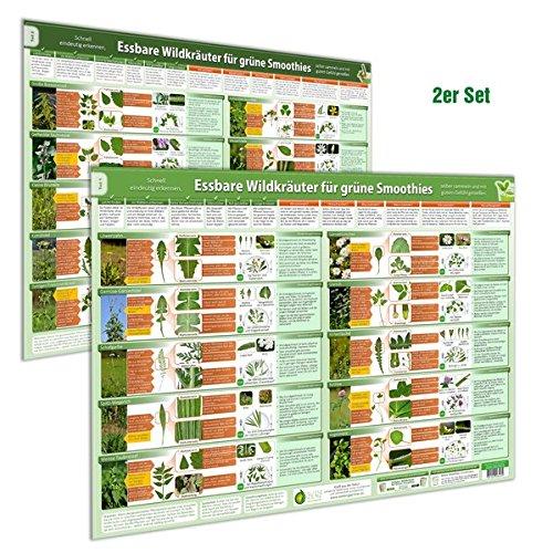 [2er Set] Essbare Wildkräuter für Grüne Smoothies Poster (DINA2) Teil 1 & 2Schnell eindeutig erkennen, selber sammeln und mit gutem Gefühl genießen