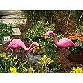 Bloem 2 Piece Flamingo Garden Stake Set