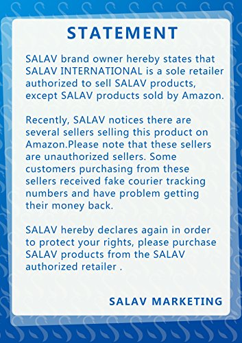 SALAV Clothes Steamer 360 High Efficiency Panel, Steam Free 1.5L Big GS24-BJ Upgraded