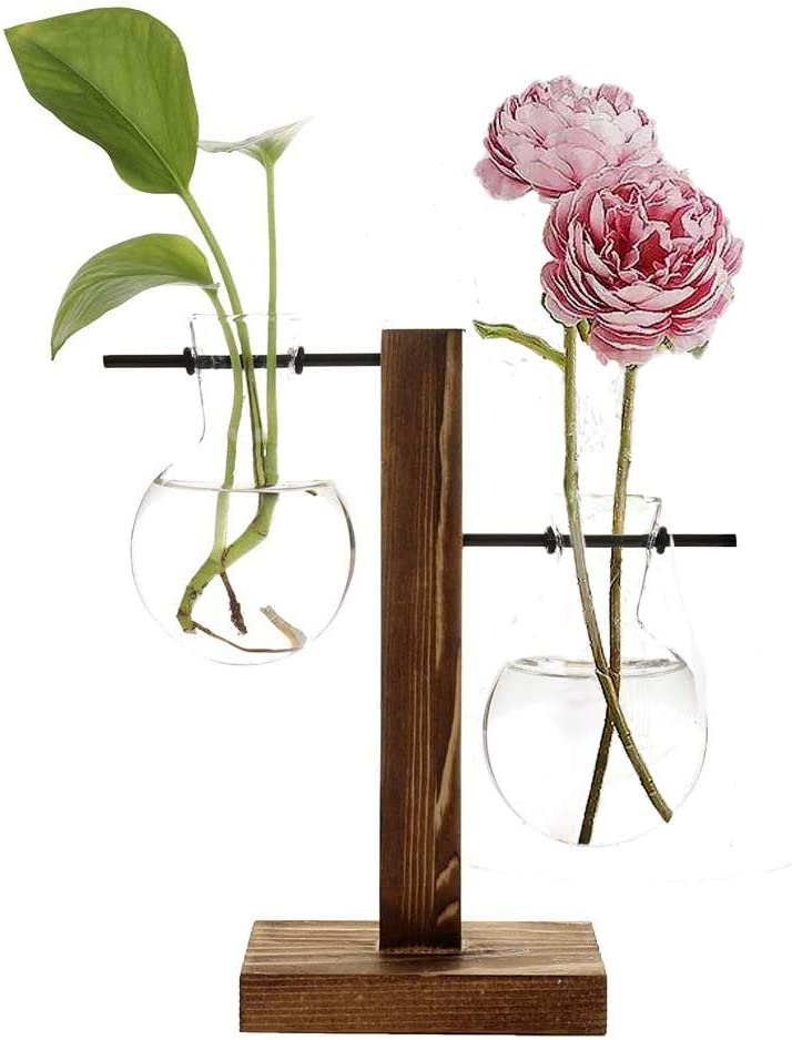 NYFSTORE Stand Glass Planter Bulb Vase with Retro Wooden Stand and Metal Swivel Holder Desktop Plant Terrarium for Hydroponics Plants Home Garden Office Decoration(2 Bulb Vase)