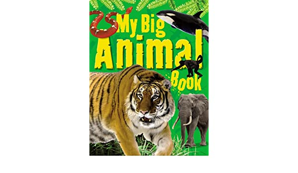 My Big Animal Book Ticktock 9781848987371 Amazon Books