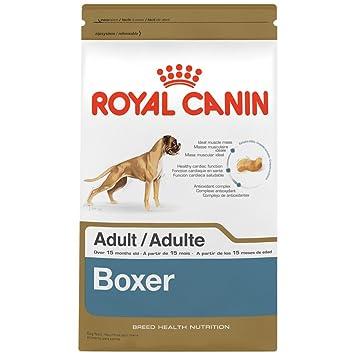 Royal Canin Boxer de croquettes pour chien, Sac de 2,7