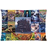 Custom Zippered Pillow Cases 20x30 (Twin sides)-Harry Potter Custom Rectangle Pillowcase Nice Classic Book Cover Collage Creative by ormanvill