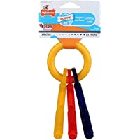 Puppy Teething Keys Dog Chew Toy [Set of 2] Size: Small