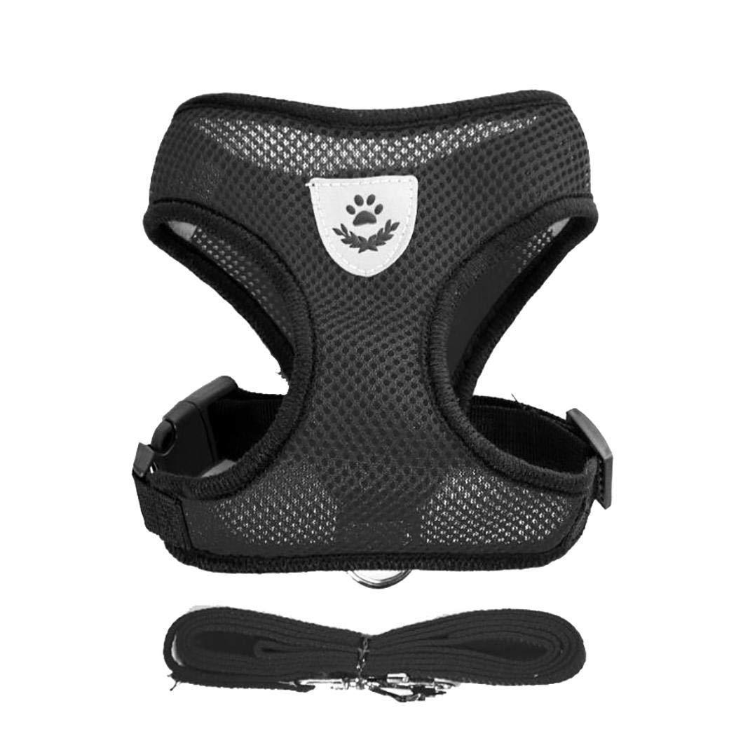 Schön luftig und leicht, perfekter Halt und Sitz für meine Miniwelpen