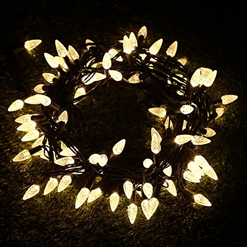 C6 Led Christmas Lights Warm White