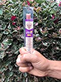 Scrumptious Free Range Turkey Sticks Gluten Free MSG Free Nitrate/Nitrite Free Paleo Friendly  Meat Sticks, Pack of 24