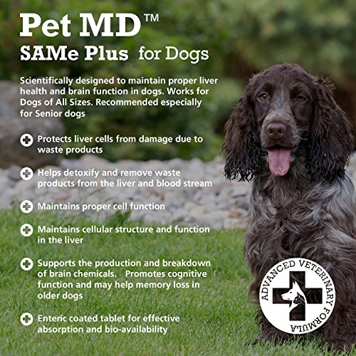 What Is S Adenosylmethionine Used For In Dogs