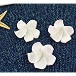Artificial-Plumeria-100PcsLot-2-5Cm-Hawaii-Pe-Plumeria-FlowerTropical-Frangipani-Foam-Flower-for-Headwear3