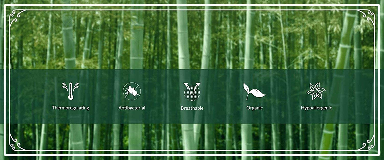Wild South Mens Bamboo Cotton Short Sleeve Vee Neck T Shirt Luxury Ecofabric Organic Sustainable Fashion