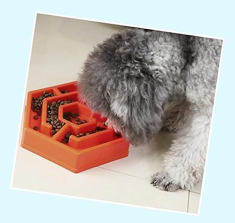 Lamzoom - Comedero Lento para Perro, Gato, comedero Interactivo para Mascotas, Mascotas,
