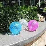 She-love-Run-About-Mini-4-inch-Small-Animal-Hamster-Run-Exercise-Ball