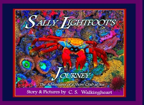 Sally Lightfoot Crab - Sally Lightfoot's Journey: The Adventures of a Shore Crab at Sea (Sea Pictures)