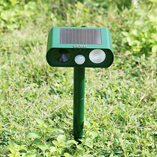 Kangsanli Solar Powered Ultrasonic Animal Repeller Outdoor Pest Control PIR Sensor Scare Cat Dog Deer Rabbit Squirrel and Other Unwanted Animals Away by Kangsanli