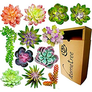 12 Fake Succulent Plants Realistic- Artificial Succulent Plants- Large Faux Succulents Unpotted- Hanging Floral Succulent Cuttings Arrangement- Outdoor And Indoor- Wall Decor -Easy DIY With Stems 78