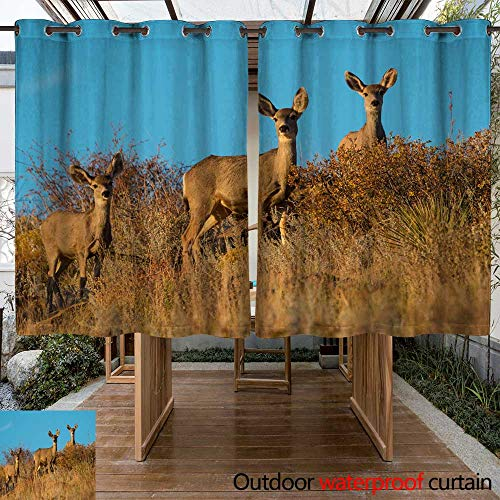 - WinfreyDecor Outdoor Curtain for Patio Mule Deer Oklahoma W63 x L72