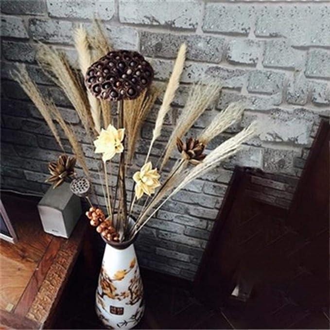 Kunstblumen Nat/ürlicher Hundeschwanz TrockenBlumen Weizen Simulation Getrocknete Blumen Handwerk Dekorative Home Table Wedding Party Bridal Bouquet Blume Hochzeit Home Party Dekoration