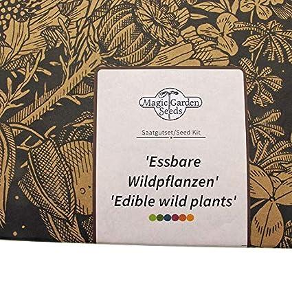 Magic Garden Seeds Kit de Semillas Regalo: Hortalizas Silvestres ...