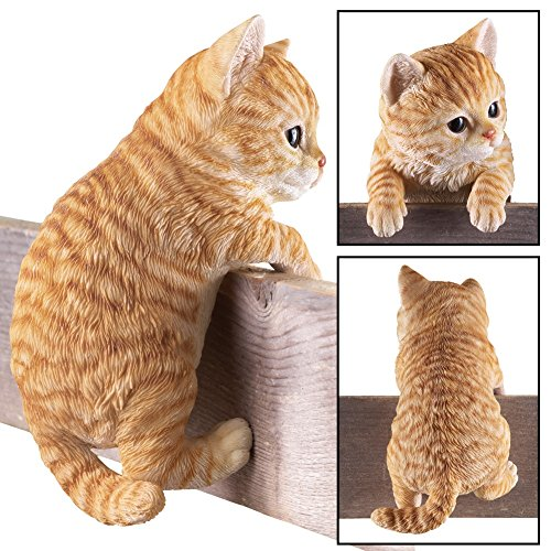 (Collections Etc Kitty Peeker Over The Fence Figurine, Orange)