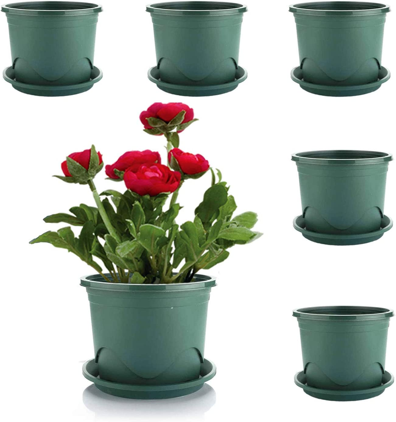 MOHENA Plant Pots with Saucers - 0.5 Gallon 6.5 Inch Plastic Dark Green Set of 6, Root-Control Nursery Seedling Planter Garden Flower Pot Container for Indoor Outdoor Bonsai Plants, Aloe, Herb