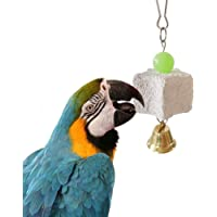 Sanwooden Funny Parrot Chew Toy Pet Birds Parrot Teeth Grinding Stone Hanging Chewing Cage Bell Toy Decoration Pet Supplies