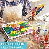 Acrylic Paint Brush Set of 15 – Best Oil