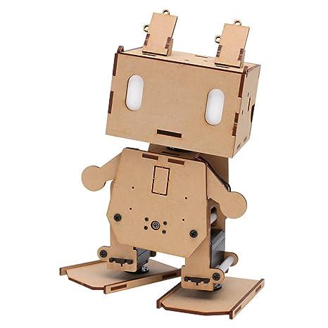 Kit de robot ESP.