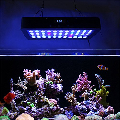 61ld9YTehaL - VIPARSPECTRA Timer Control 165W LED Aquarium Light Dimmable Full Spectrum for Coral Reef Grow Fish Tank