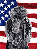 Cheap Caroline's Treasures SC9626CHF Black Standard Poodle with American Flag USA Flag Canvas, Large, Multicolor