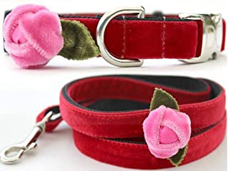 "product image for Diva-Dog 'Rosebud Red' Custom 5/8"" Wide Velvet Dog Collar with Plain or Engraved Buckle, Matching Leash Available"