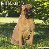 Bull Mastiff Calendar - Dog Breed Calendars - 2017 - 2018 wall Calendars - 16 Month by Avonside