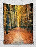 Ambesonne Forest Tapestry Fall Trees Decor by, Romantic Autumn Alley in the Woods and Forest Picture Print, Bedroom Living Girls Boys Room Dorm Accessories Wall Hanging Tapestry, Olive Brown Paprika