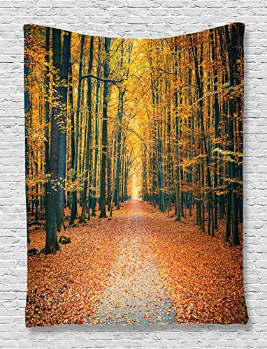 - Ambesonne Forest Tapestry, Romantic Autumn Alley in The Woods Foliage Scenics Park Forest Image, Wall Hanging for Bedroom Living Room Dorm, 60