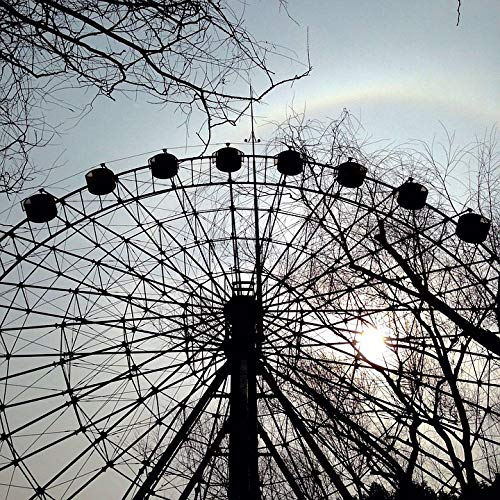 (Home Comforts Peel-n-Stick Poster of The Ferris Wheel Halo Sunset Shanghai Zoo Rainbow Vivid Imagery Poster 24 x 16 Adhesive Sticker Poster Print)