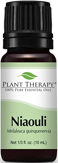 Plant Therapy Niaouli Oil