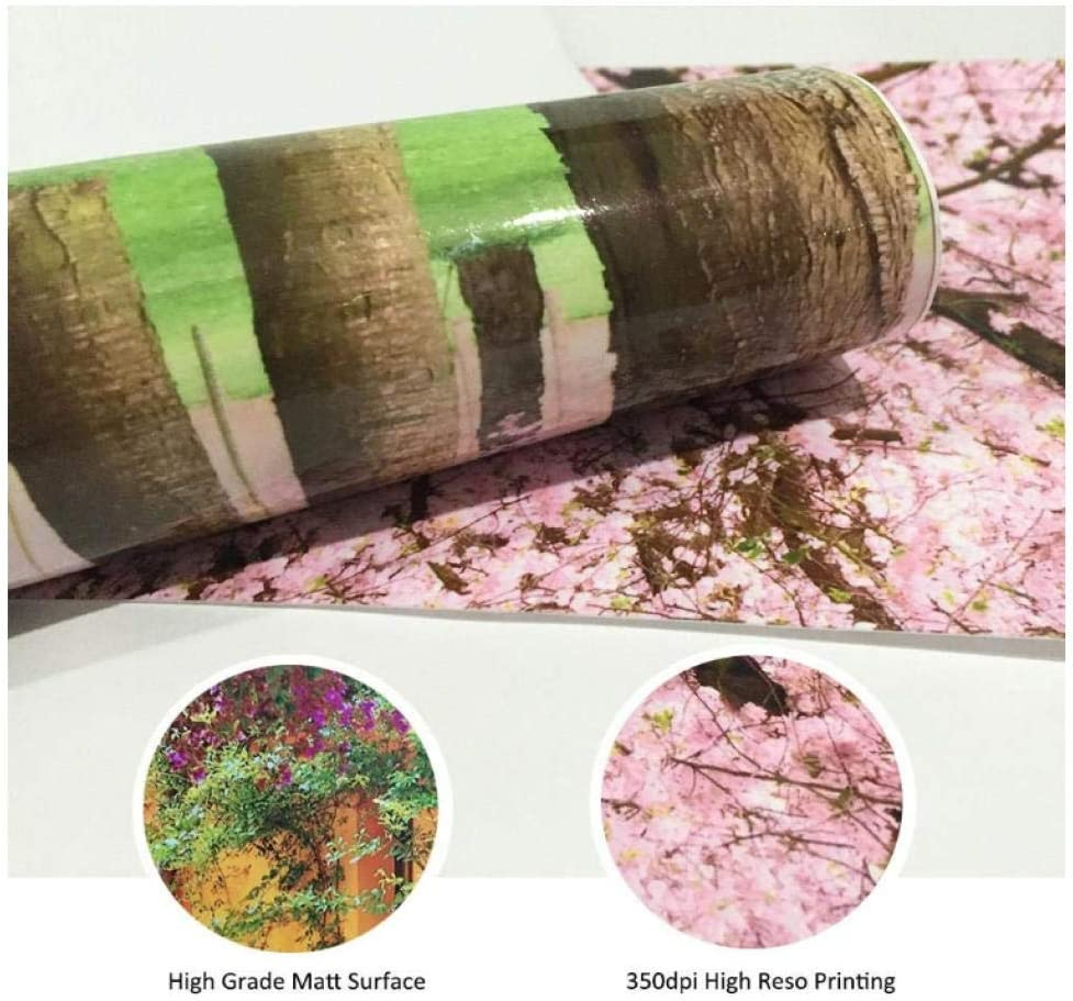 BOAOMAN 3D Sticker Porte Trompe loeil Effect pour D/écoration Mur Salon Cuisine Chambre Salle de Bain Papier Peint-Voiture de Style r/étro Rose